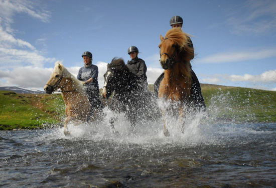 Horse riding in the north of Iceland